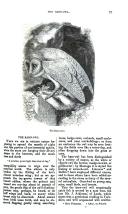Pàgina 97
