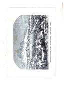 Pàgina 286