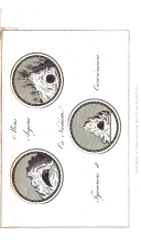 Pàgina 268