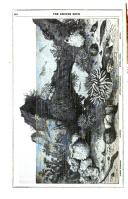 Pàgina 440