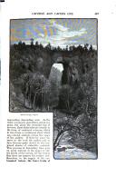Pàgina 457