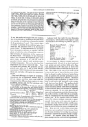 Pàgina 2